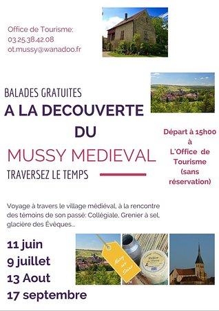 Mussy-sur-Seine, Frankreich: découverte du mussy médiéval en nocturne