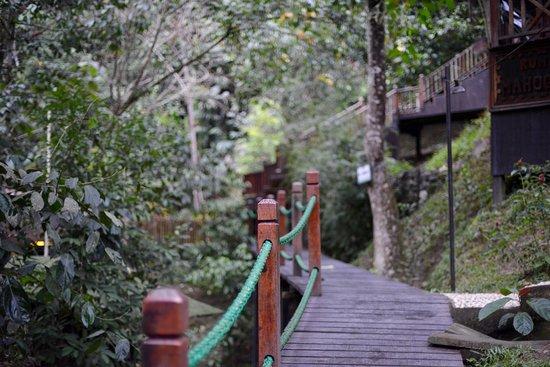 Raub District, Malásia: Embracing nature