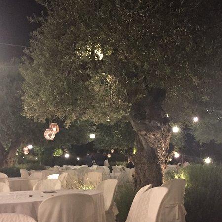 Santa Venerina, Italia: Allestimento giardino per matrimonio