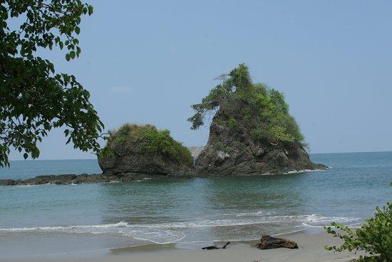 Nature Experts Manuel Antonio Tours Looks Refreshing Espadilla Sur Beach In The Park