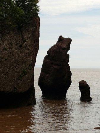 Hopewell Rocks: 20160725_154911_large.jpg