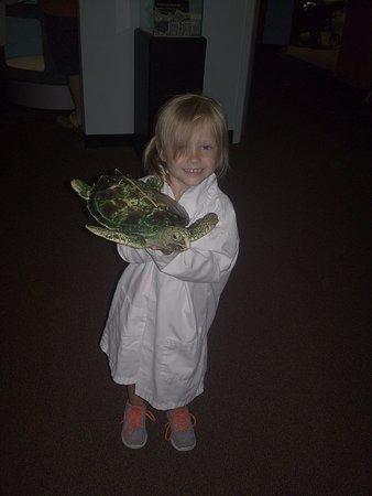 Manteo, Carolina del Norte: My little marine biologist. treating her turtle