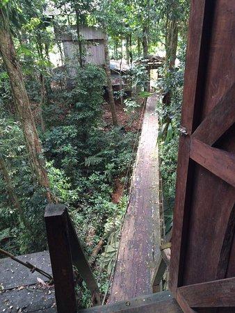 Puerto Viejo de Sarapiqui, Costa Rica: 2 nachten op deze locatie doorgebracht. Erg aardig personeel. Prachtig uitzicht