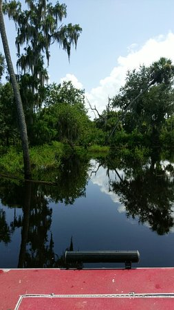 Arcadia, FL: IMAG0558_large.jpg