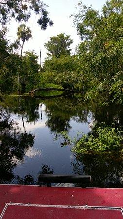 Arcadia, FL: IMAG0557_large.jpg
