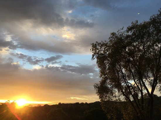Advancetown, Австралия: photo4.jpg