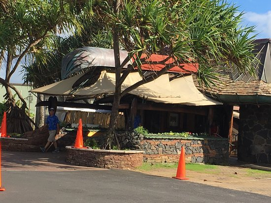 Picture of mama 39 s fish house paia tripadvisor for Fish house maui