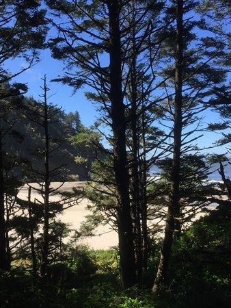 Yachats coastline: photo5.jpg