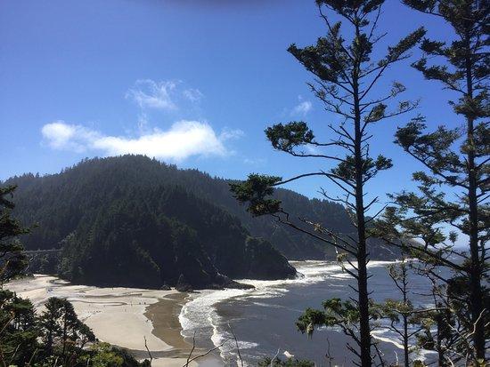 Yachats coastline: photo7.jpg