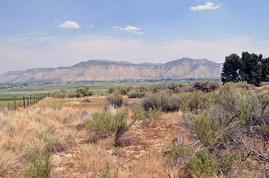 Mesa Verde National Park, Κολοράντο: Ute Mountain.