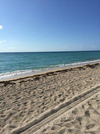Surfside, FL: photo2.jpg