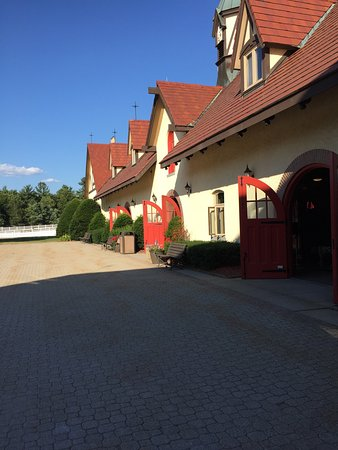Anheuser-Busch Brewery Tours: photo0.jpg