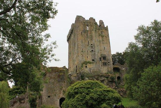 บลาร์นีย์, ไอร์แลนด์: Walking up to Blarney Castle