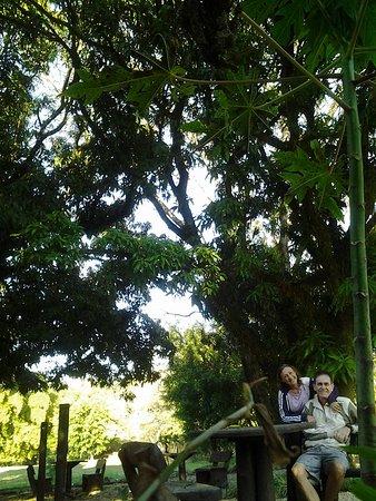 Jaguariuna ภาพถ่าย