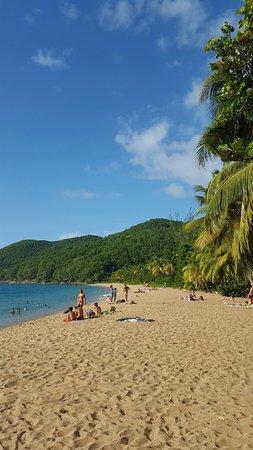 Deshaies, Guadeloupe: 20160722_164352_large.jpg