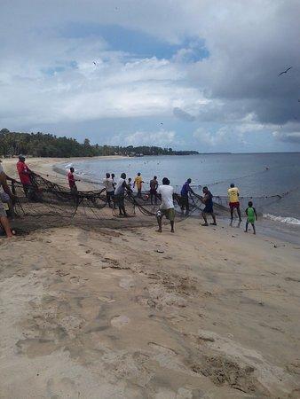 Arnos Vale, Tobago: IMG_20160720_111159_large.jpg