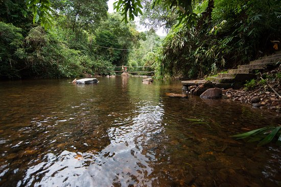 Zuidelijke Provincie, Sri Lanka: Take a bath in the river next to the lodge