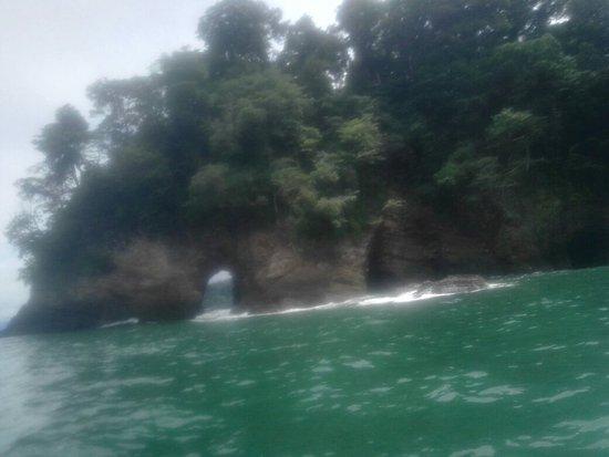Osa Peninsula, Costa Rica: IMG_20160726_104713_large.jpg