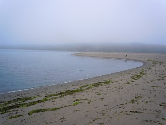 Dillon Beach, Kalifornien: early morning fog