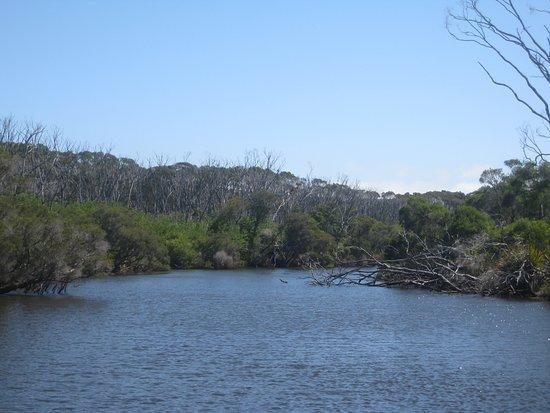 Pemberton, Australia: serene