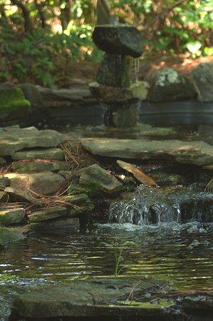 Pinehurst, NC: A stream in the gardens.