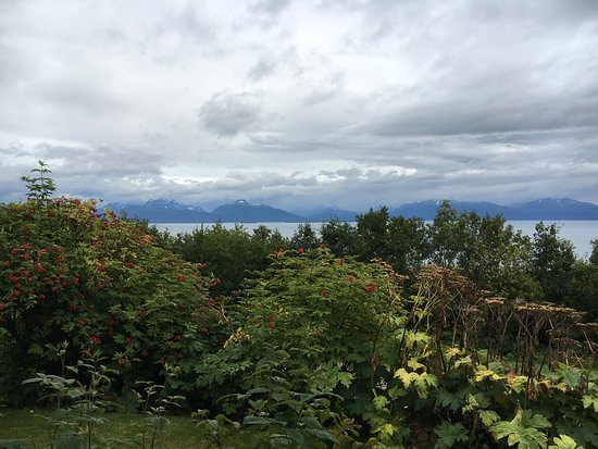 Alaska Adventure Cabins: photo0.jpg