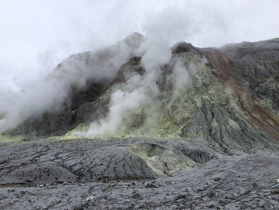 Whakatane, New Zealand: photo2.jpg
