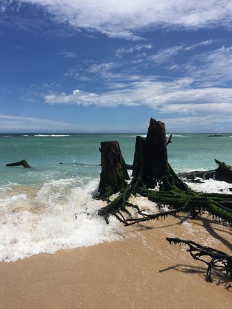 Paia, Hawaï: photo3.jpg