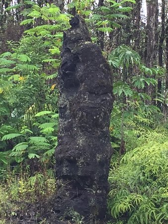 Pahoa, Hawaï : photo1.jpg