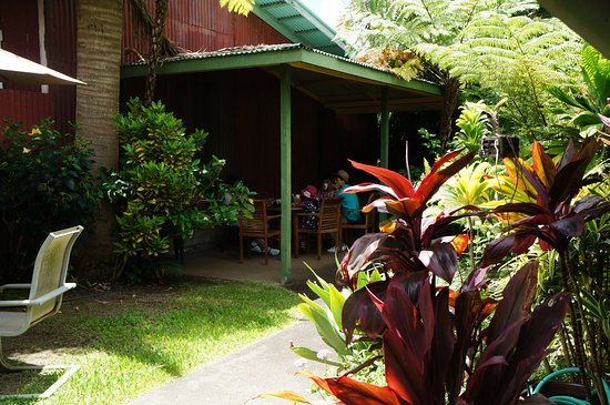 Kapaau, HI: 中庭の一角、屋根のある席でいただきました。