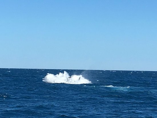 Hervey Bay, Australien: Fall