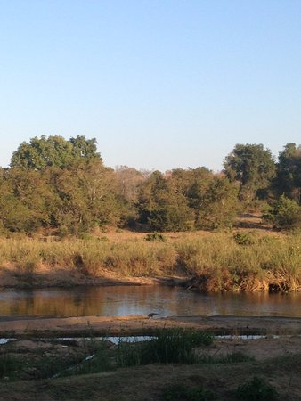 Sabie River Bush Lodge: View from the deck across the river