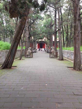 Qufu, China: photo3.jpg