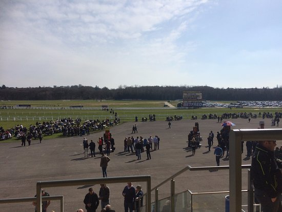 Newbury Racecourse: View from the stands
