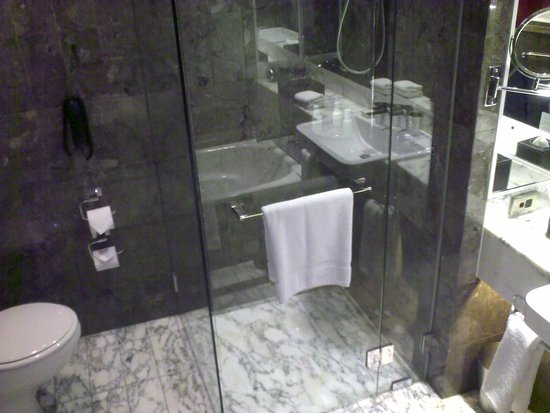 Grand Hyatt Melbourne: shower