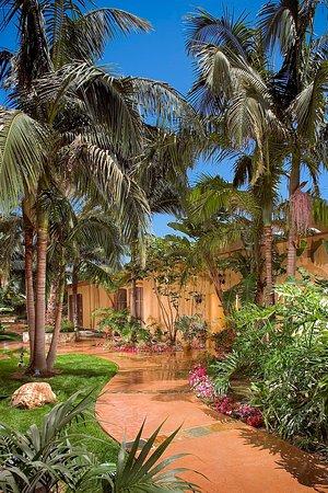ALO Hotel: Courtyard