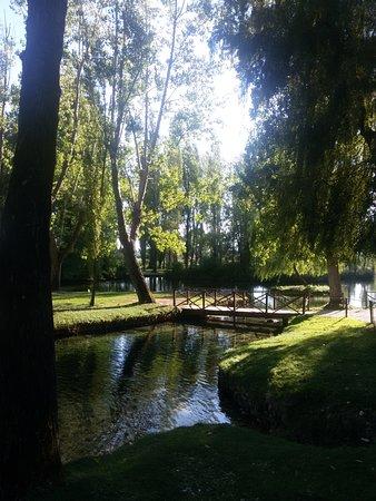 Campello sul Clitunno, Italia: Parco