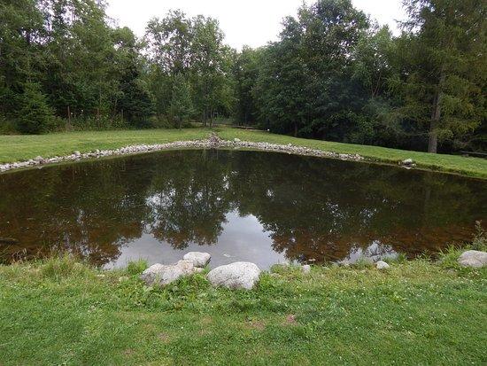 Botanicka zahrada - Expozicia Tatranskej prirody: botanická záhrada