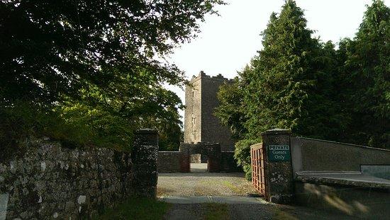 Ross Castle B&B: IMAG3390_large.jpg