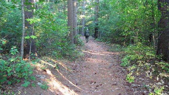 Canton, MA: Eastern Trail