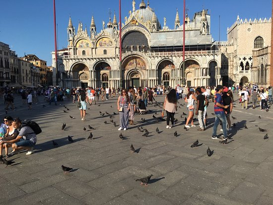 Venice with A Guide : Lovely Venice! What a superb place! Everything is so magical. I was surprised to know how it was