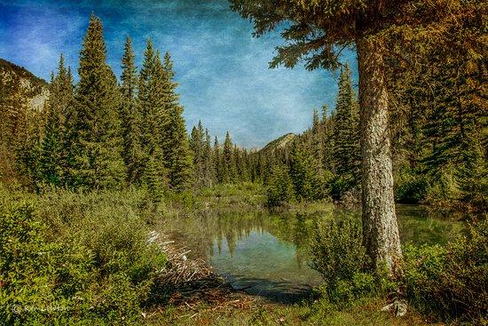 Deep Canyon Guest Ranch : Beautiful Montana Scenery!