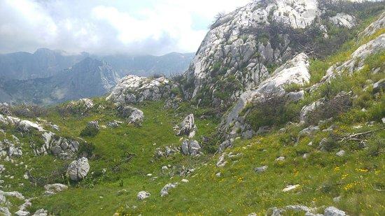 Durmitor National Park, Montenegro: 20160726_134835_large.jpg