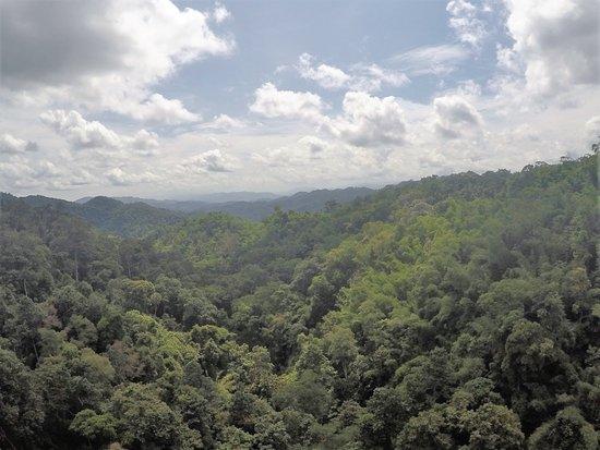 Huay Xai, Laos: Zip wire view