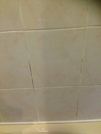 Kirkby Lonsdale, UK: Dirty/Mouldy bath tiles