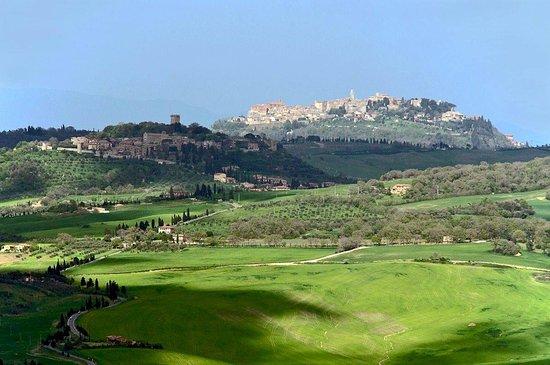 Sant' Antonio: Local area
