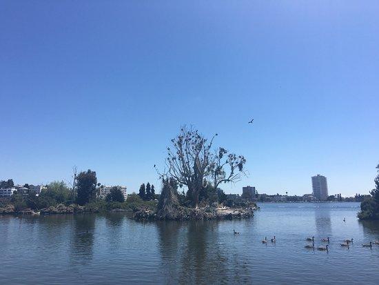 Oakland, CA: photo3.jpg