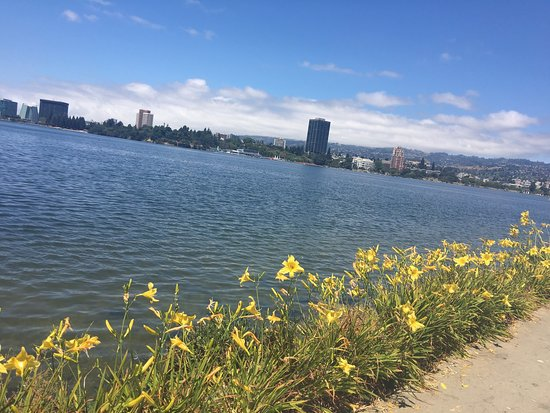 Oakland, CA: photo5.jpg