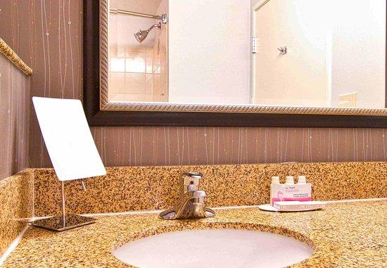 แบล็กส์เบิร์ก, เวอร์จิเนีย: Guest Bathroom