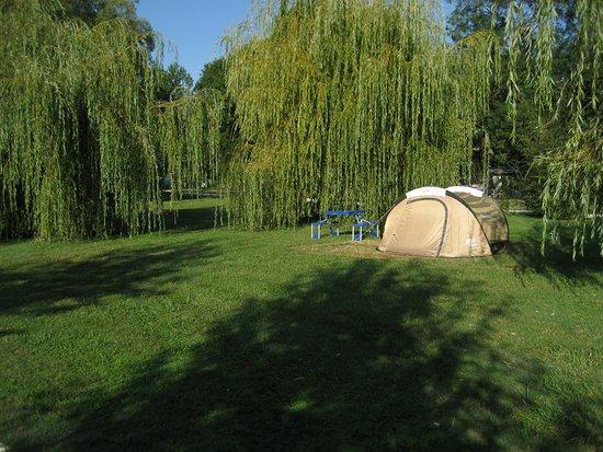 Medis, France : emplacements pour tentes et caravanes de 350 à 400 m2 dans un grand parc arboré